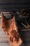 Rustikales pinecone Stockfoto