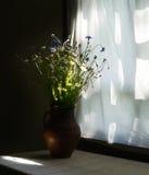 Rustikales Stillleben mit wilden Blumen im braunen keramischen Krug nahe Weinlesefenster Lizenzfreie Stockbilder