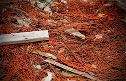 Rusting Debris. A view of rusting wire debris thrown randomly into a pile. Possible environmental or recycle flyer background Stock Photography