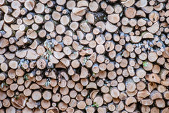 Rustless logs Stock Images