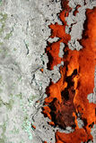 Rusty. A old and rusty door royalty free stock photos