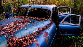 An rusty, abandoned car covered in fallen leaves, found in the w Royalty Free Stock Photos