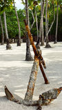 Rusty anchor on sands. The old anchor lies on the sand on the coast of Caribbean Sea. Palms forest on background Stock Photo