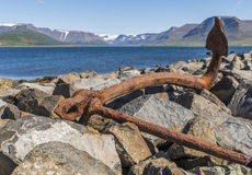 Rusty Anchor. On the shore of stones in Iceland Royalty Free Stock Photo