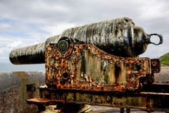 Rusty Ancient Cannon UK Arkivfoton