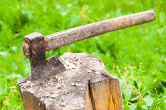 Rusty axe in log lateral view Stock Images