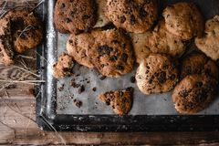 Some cookies on the baking sheet Stock Images