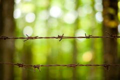 Rusty barb wire. Close up of rusty barb wire over green background Stock Photos
