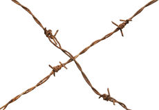 Rusty barb wire Stock Photography