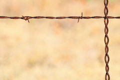 Rusty Barbed Wire Background. Close up of a rusty barbed wire fence with a light brown background to use as a background or border stock images