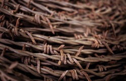 Rusty barbed wire on blurred background. Stock Images