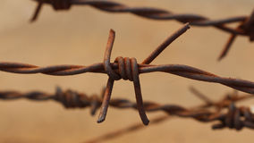 Rusty barbed wire Stock Images