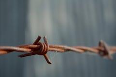 Rusty Barbed Wire Fence con el fondo borroso de la vertiente de Corregated Imagen de archivo libre de regalías
