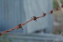 Rusty Barbed Wire Fence con las telarañas y el fondo gris y verde borroso Fotos de archivo