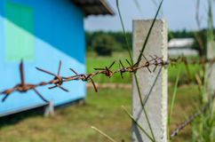 Rusty Barbed wire fence selective focus. With blur overgrown grass and blue house background; countryside Stock Images