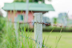 Rusty Barbed wire fence selective focus. With blur overgrown grass and orange house background; countryside royalty free stock images