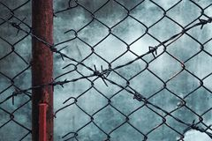 Rusty barbed wire with grunge wall Royalty Free Stock Photo