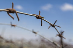 Rusty Barbed Wire Royalty Free Stock Photos