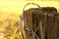 Rusty barbed wire on old post - very shallow depth of focus with Autumn or winter yellow background. Rusty barbed wire on an old post - very shallow depth of stock images
