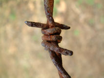 Rusty barbed wire Stock Photography