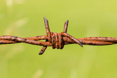 Rusty barbed wire Stock Photo