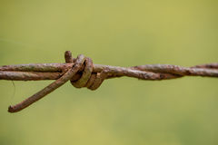 Rusty barbed wire up close. Old rusty barbed wire up close with green blurred background Stock Photos