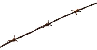 Rusty barbed wire and white background Royalty Free Stock Images