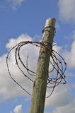 Rusty barbed wire wrapped around post Royalty Free Stock Photos