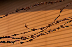 Rusty barbed writ on the brown background. It is remark ably barbed wire of the color of rust, and the confusion that has been used for the background color is Royalty Free Stock Photo