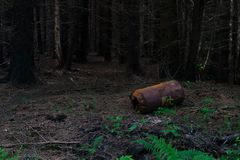 Rusty barrel dumped in forest. A rusty barrel, dumped a long time ago in a dark pine forest Royalty Free Stock Photos