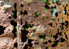 Rusty barrel with holes Royalty Free Stock Photos