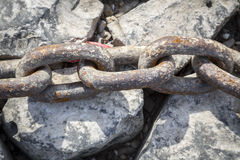 Rusty big old chain Royalty Free Stock Images