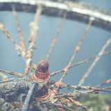 Rusty Bike By Water Royalty Free Stock Images