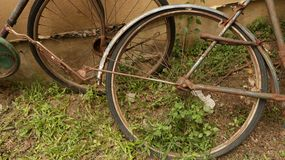 Rusty Bike Wheel in de Tuin royalty-vrije stock afbeelding