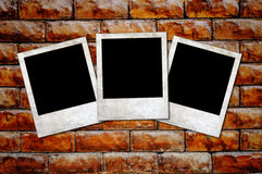 Rusty blank Photo frames on a concrete background Stock Photography