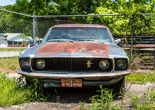 Rusty Blue Mustang Stock Photography
