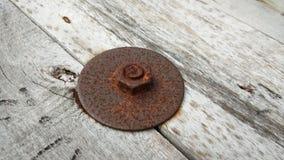 rusty bolt Royalty Free Stock Photo