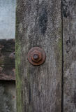 Rusty Bolt on Wood. Stock Image