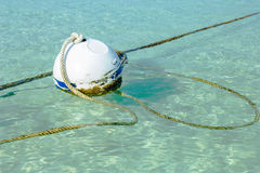 Rusty buoy in port water with ropes Stock Image