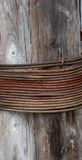Rusty cable. Wrapped around weathered log Stock Photo
