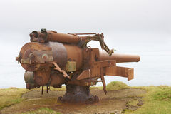 Rusty cannon from the World War 2 era. Pointing out in the ocean Stock Photos