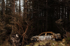 Rusty car in Connemara forest. Rusty car abandoned in a forest in the  Connemara mountains Stock Photography