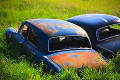 Free Rusty Car In The Tall Grass Royalty Free Stock Images - 16308659