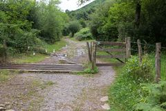 Rusty Cattle grid in a forest path stock photo