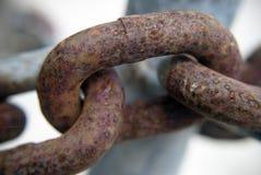 Rusty chain closeup Royalty Free Stock Photo