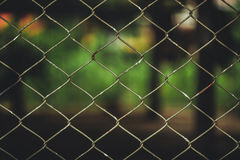 Rusty Chain Link Fence of steel netting on blur background. Stock Image