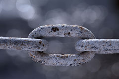 Rusty Chain Links with Spider Web Royalty Free Stock Image