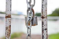 Rusty chain and master key locked on grunge iron gate Stock Image