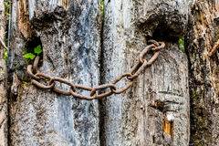 Rusty Chain on Old Post Royalty Free Stock Images