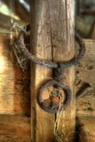 Rusty chain on wooden fence. Rusty links of chain on wooden fence on farm Stock Image